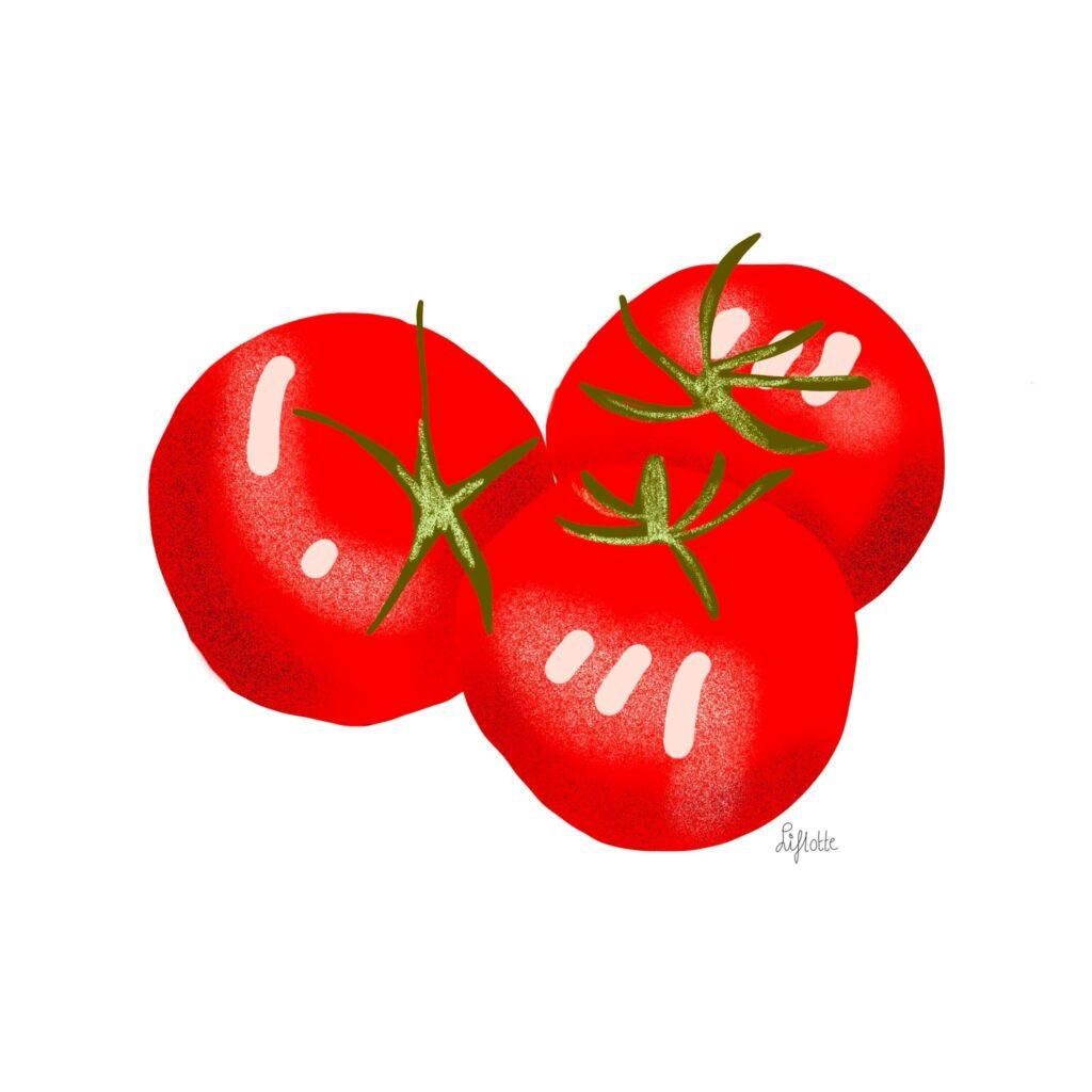 Liflotte omrin deel 2 tomaat